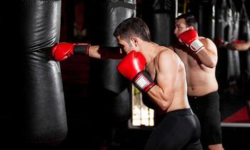 Master Classes on MMA/Kickboxing, Weight Loss and Street Fighting